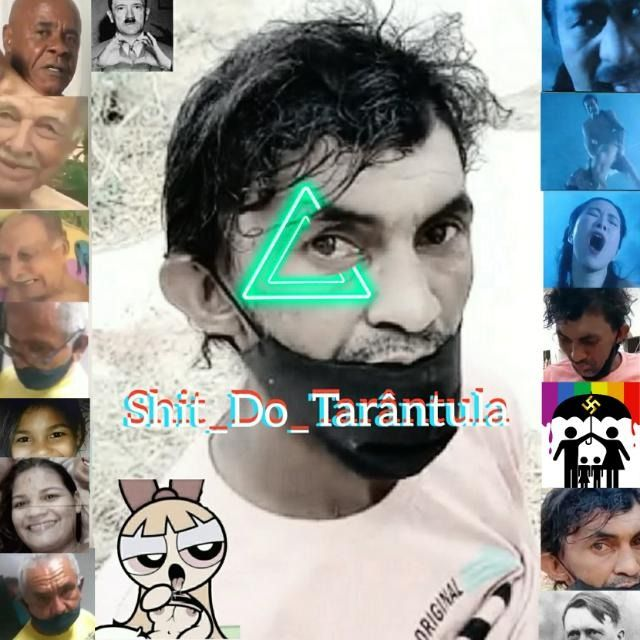 SHITPOST DO TARANTULA - Grupos de WhatsApp
